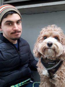 chelsea dog trainer